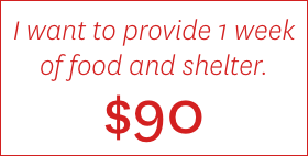 I want to provide 1 week of food and shelter. $90